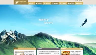 中天金融网站建设官网